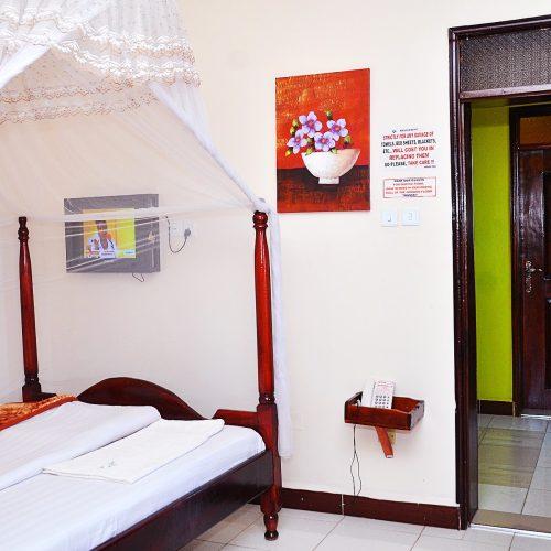 Luxuriant Single Room